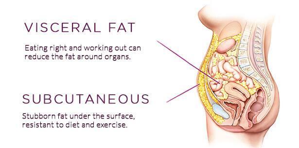 أنوع الدهون في جسم الإنسان وكيفية التخلص منها